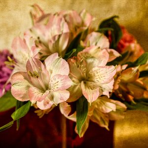Muted Posies
