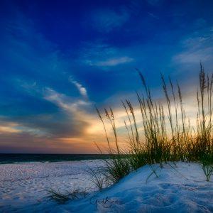 Sunset Oats